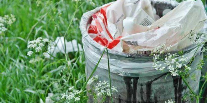 La France veut bannir tous les ustensiles en plastique en 2020