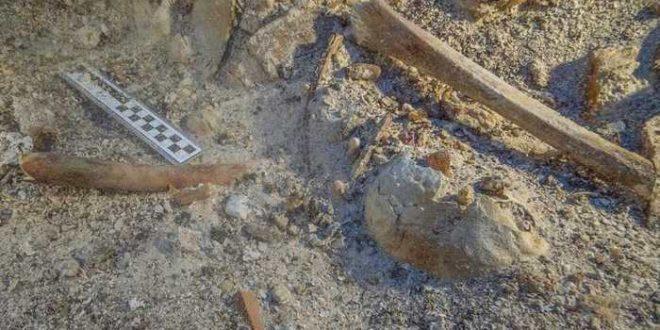 Découverte d'un squelette sur l'épave d'Anticythère