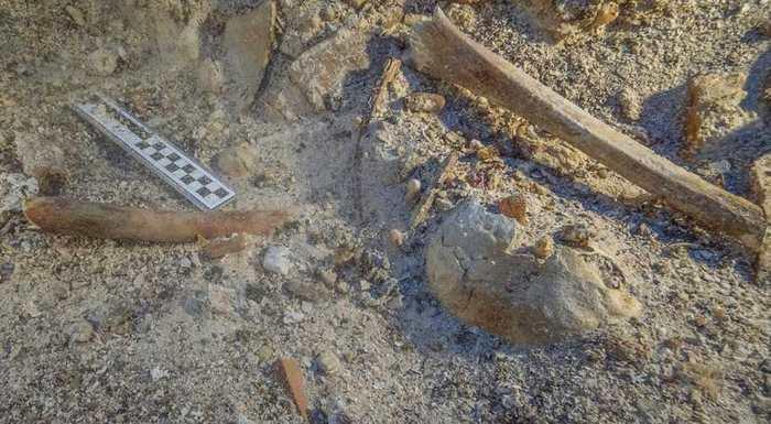 Des chercheurs ont découvert un squelette parfaitement conservé sur l'épave d'Anticythère. L'Anticythère est l'une des plus grandes épaves qu'on a retrouvées de l'époque antique. Cette épave est surtout connue pour la découverte du mécanisme d'Antikythera, considéré comme le premier ordinateur de l'humanité.