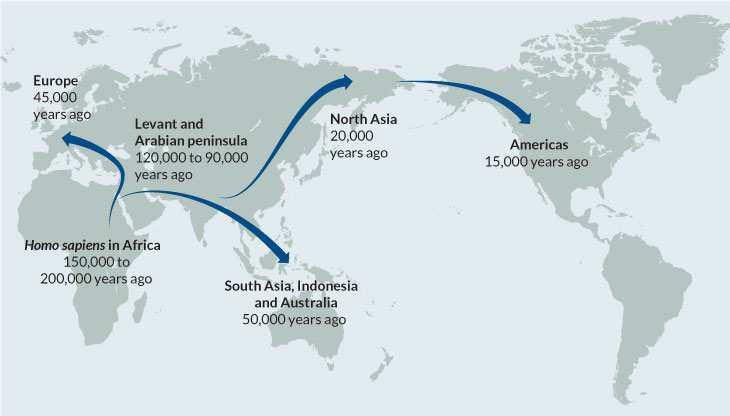 La carte de la migration humaine depuis l'Afrique vers le reste du monde.