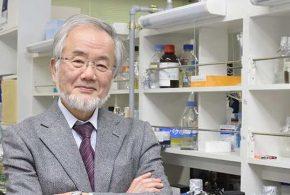 Le biologiste Yoshinori Ohsumi a reçu le prix Nobel de Médecine 2016 pour ses travaux pionniers sur l'autophagie, le mécanisme de recyclage des cellules.