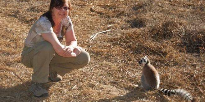 Les lémuriens Catta menacés de disparition à Madagascar
