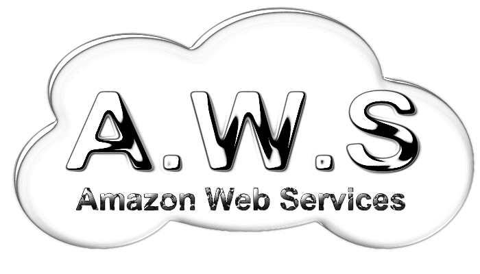 L'histoire d'AWS, Amazon Web Services, jusqu'à son domination sans partage sur le secteur du Cloud.