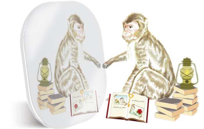 Une recherche suggère que comme les humains, les macaques peuvent évaluer leur capacité à se rappeler de leurs souvenirs. On pensait que cette fonction était propre aux humains.