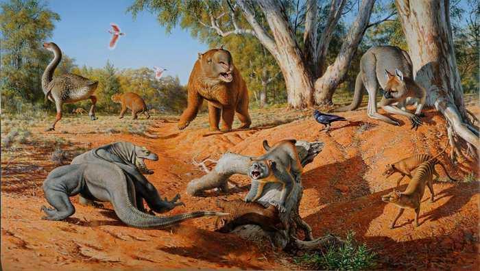 De nouvelles preuves impliquant des matières fécales provenant des grandes et étonnantes créatures qui vivaient en Australie, surnommées la mégafaune, ont disparu il y a 45 000 ans à cause des humains et non du changement climatique.