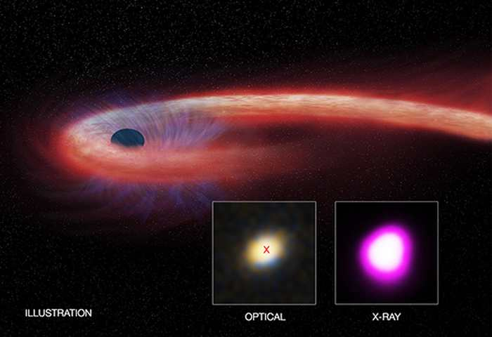 Un trou noir a détruit une étoile et il l'a consommé pendant une décennie. C'est une période qui est 10 fois supérieure à tout ce qu'on avait observé auparavant.