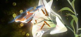 Un gel pour transformer des drones miniatures en pollinisateurs artificiels