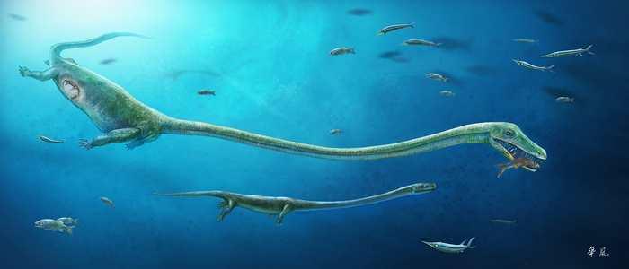 Une équipe a découvert un fossile qui montre la preuve d'une naissance vivante concernant le Dinocephalosaurus qui est une espèce proche des reptiles et des oiseaux qui pondent habituellement des oeufs.