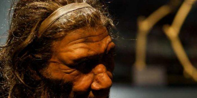 L'ADN du Néandertal contribue à notre expression génique