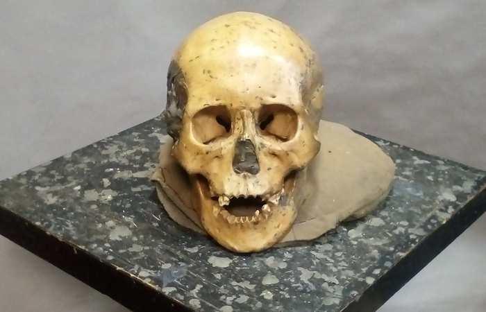 Une recherche suggère que les anciens humains de l'est de l'Asie pendant le néolithique sont très proches des populations sur le plan génétique. Cela contraste avec la diversité génétique entre les ancêtres et les populations dans d'autres régions du monde.