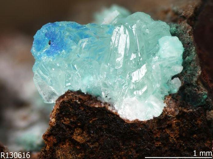 Le Simonkolleite est un minérai anthropogénique qu'on a découvert dans une mine de cuivre en Arizona - Crédit : RRUFF