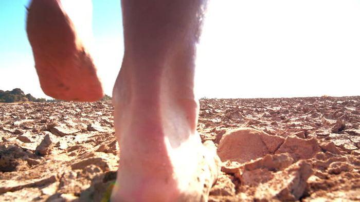 Une épidémie récente d'Éléphantiasis en Ouganda est liée au fait de marcher pieds nus sur un sol volcanique et non à un ver habituellement associé à cette maladie.