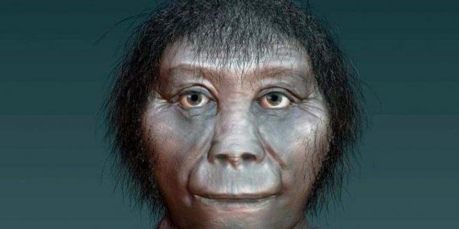 Les origines révélées de l'Homme de Florès (Homo floresiensis)