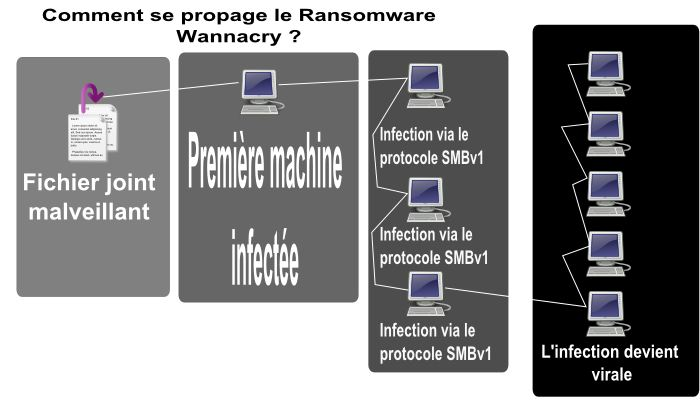 Comment se propage le Ransomware Wanna cry ?
