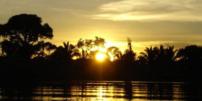 Les barrages hydrauliques menacent le futur de l'Amazonie