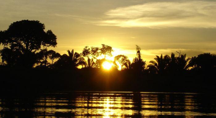Les centaines de barrages construits ou prévus menacent le futur de l'Amazonie. Est-ce que le besoin énergétique est si nécessaire qu'il faille détruire le poumon de la planète ?
