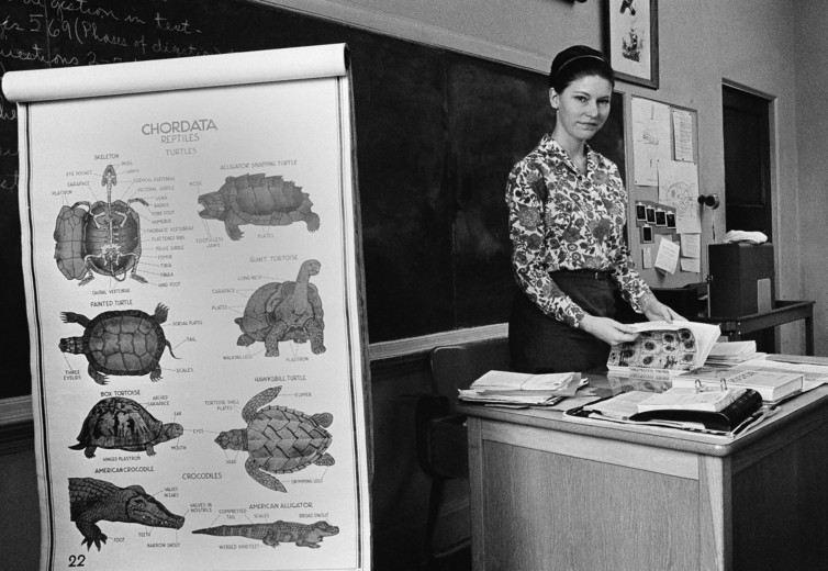 Susan Epperson, enseignante en biologie, avait défié l'interdiction d'enseigner l'évolution en Arkansas - AP Photo