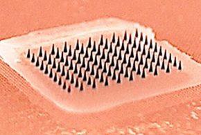 Un zoom sur ce patch de micro-aiguille pour le vaccin contre la grippe. C'est indolore et les petites aiguilles se dissolvent après l'utilisation - Crédit : Georgia Tech
