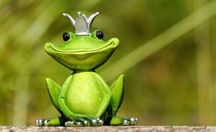 L'extinction de masse qui a exterminé les trois quarts de la vie sur Terre incluant les dinosaures non aviaires a ouvert la voie pour l'avènement des grenouilles.