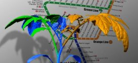 Comment l'architecture des plantes imite les réseaux du métro ?