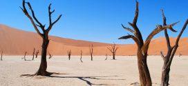 Réchauffement climatique : Comprendre la limite des 2 degrés Celsius