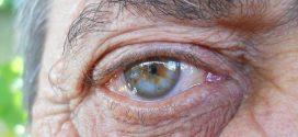 L'évolution réduit les traits associés à la maladie d'Alzheimer et au tabagisme