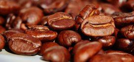 Le café, les abeilles et le changement climatique
