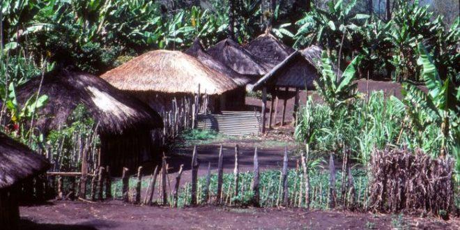 Une grande diversité génétique dans les populations de la Papouasie-Nouvelle-Guinée