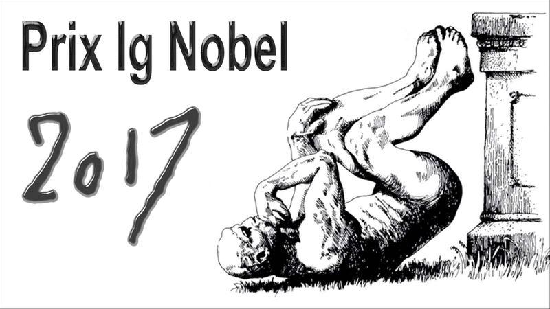 Chaque année, le Ig Nobel récompense les recherches scientifiques les plus étranges, insolites, mais qui font réfléchir. Pour les Ig Nobel 2017, on a des chats qui se comportent comme du liquide et du solide, la proximité d'un crocodile sur l'impact des paris sur les jeux d'argent. Sans oublier la question de pourquoi les vieux hommes ont de grandes oreilles ou que des chauves-souris boivent du sang humain et même un instrument de musique intra-vaginale. C'est parti.