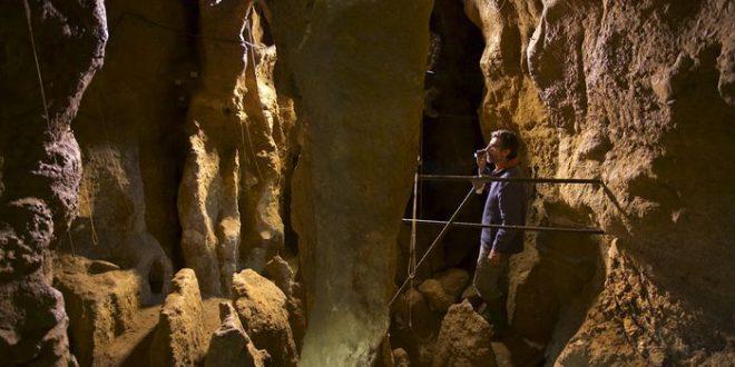 Un squelette de Neandertal révèle le pattern de croissance de nos cousins