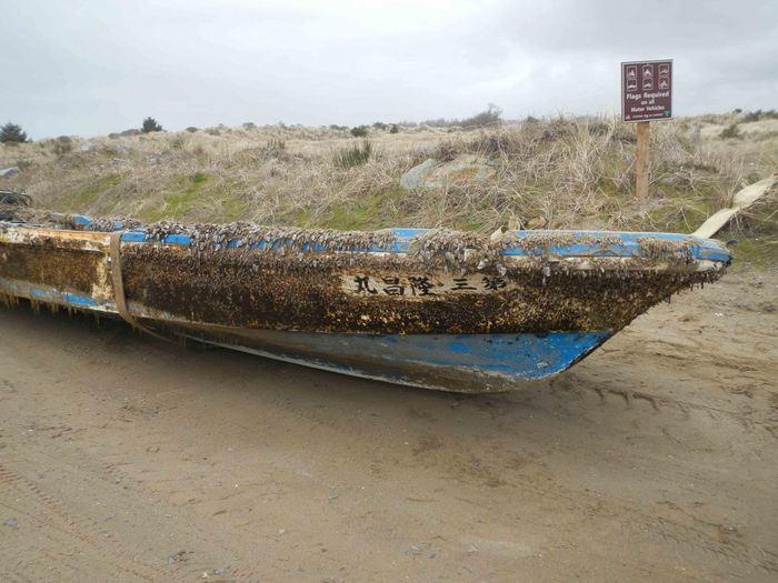 Un navire japonais échoué en Oregon. Des espèces cotières l'ont utilisé pour traverser l'océan - Crédit : John Chapman