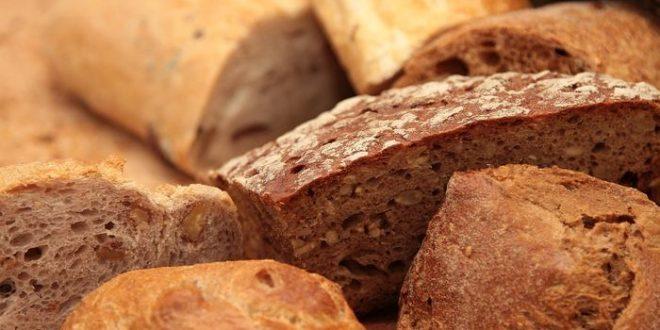 Un blé modifié avec le CRISPR adapté pour la maladie coeliaque (intolérance au gluten)