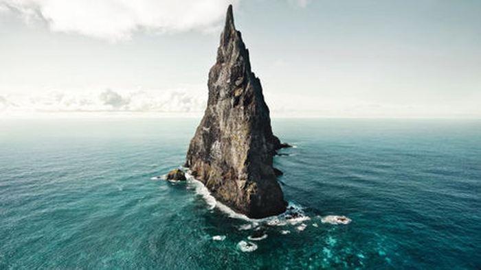 Sur l'Île Lord Howe, on pensait qu'une espèce de phasme avait totalement disparu. Désormais, une étude montre que cet insecte a réussi à survivre et c'est un message pour comprendre la fragilité d'une île par rapport à des espèces envahissantes.