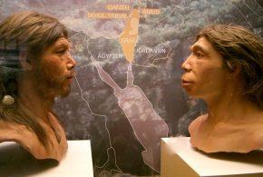 Une recherche suggère que le Neandertal a influencé la génétique des humains modernes quand les 2 espèces se sont accouplées dans la région du Moyen-Orient et la Turquie qui est un carrefour important pour la migration depuis l'Afrique pour aller vers l'Asie et l'Europe.