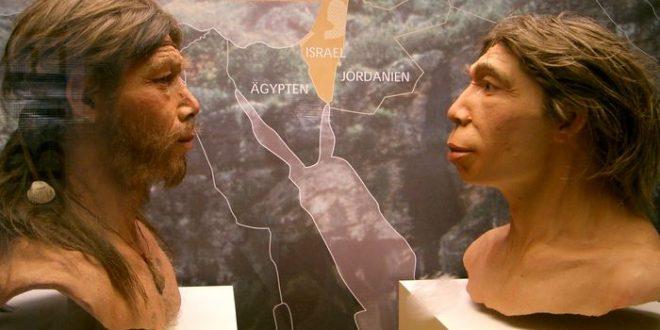 Comment Neandertal a-t-il influencé la génétique humaine au carrefour de l'Asie et de l'Europe
