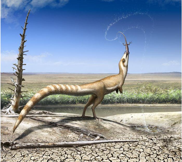 Des chercheurs révèlent comment un petit dinosaure à plumes, le Sinosauropteryx, utilisait son motif de couleur incluant une bande semblable à un masque de bandit sur ses yeux pour éviter d'être détecté par ses prédateurs et ses proies.