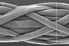 Dans une petite expérience avec les souris, les chercheurs rapportent que des nanomatériaux connus comme des nanotubes de carbone longs peuvent poser un risque similaire à celui de l'amiante.