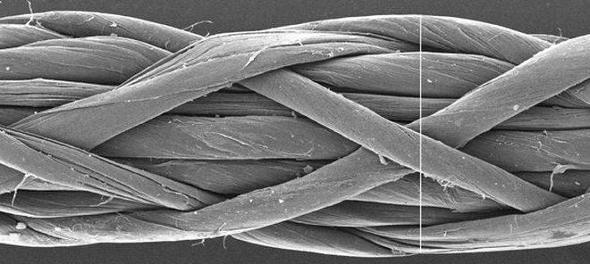 Un sous-ensemble de nanotubes de carbone présente des risques cancérigènes similaires à l'amiante
