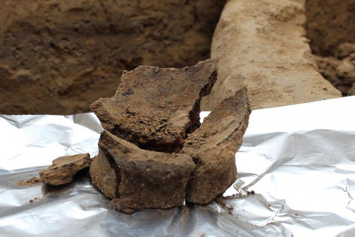 Le fond d'une jarre datant du néolithique révèle des résidus de composants dans la fabrication du vin - Crédit : Judyta Olszewski