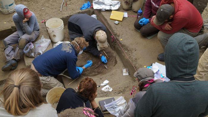 Les excavations au site archéologique de l'Upward Sun River en Alaska. L'étude montre que les restes appartiennent à une population d'amérindienne inconnue surnommée comme les Anciens Béringiens - Crédit : Ben Potter