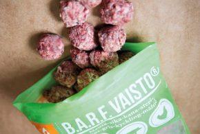 Une petite étude suggère la présence de bactéries pathogènes et de parasites dans les aliments connus comme des BARF qui sont des produits exclusivement à base de viande crue sans aucune addition de procédés industriels.