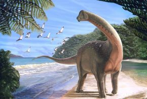 Une illustration d'artiste de Mansourasaurus shahinae - Crédit : Andrew McAfee, Carnegie Museum of Natural History