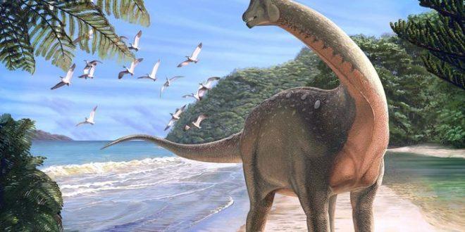 Mansourasaurus shahinae, un dinosaure révèle un lien entre l'Afrique et l'Europe
