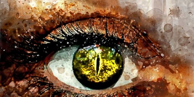 Premier cas d'une femme infectée par un ver oculaire de type Thelazia