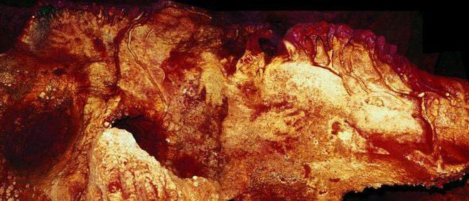 Les Néandertaliens créaient des peintures rupestres avec un sens artistique similaire au notre