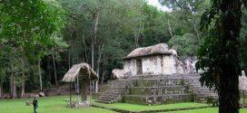 Un possible élevage de chien pour des cérémonies Maya