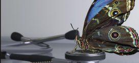 Une caméra, s'inspirant d'un papillon, pour détecter le cancer