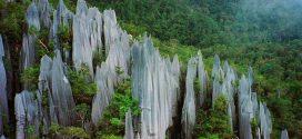 Une nouvelle source d'azote provenant des roches