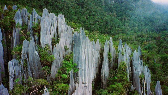 Les crêtes de Gunung Mulu à Bornéo pourraient la production de l'azote par l'altération des roches calcaires - Crédit : Paul White on FLICKR (Creative Commons at https://www.flickr.com/photos/thinkofacolour/988949489)
