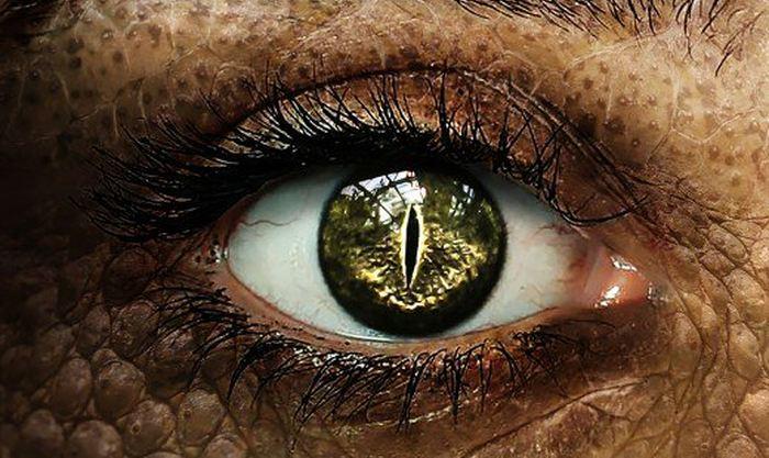 Théorie du complot : Croire aux reptiliens pour se sentir unique